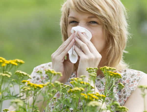 Asthma bronchiale – Ursachen