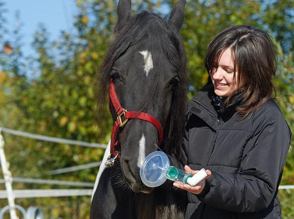 Effektive Behandlung von Pferdedämpfigkeit mit Medikamentensprays